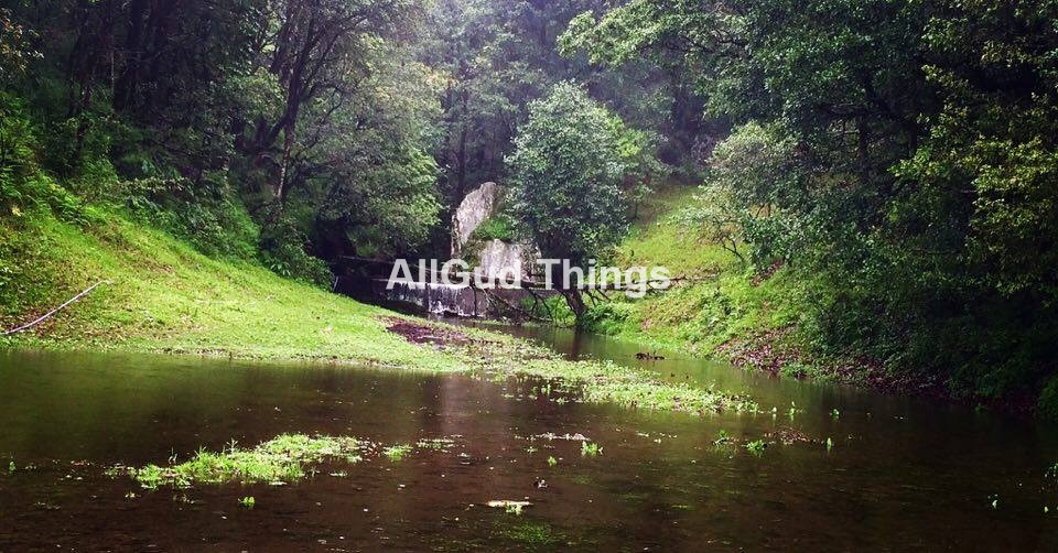 The Beautiful Binsar Valley in Monsoons