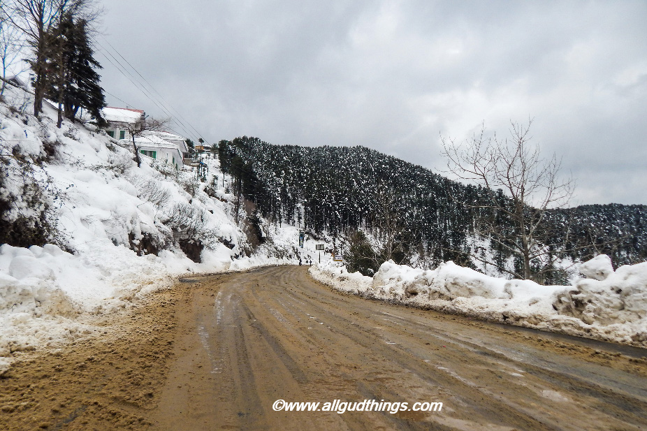 On the way from Kufri - beautiful Shimla after snowfall