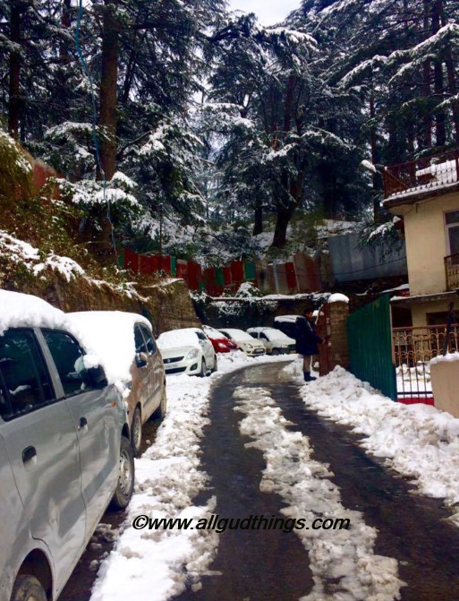 Navbahar Shimla - Beautiful Shimla after Snowfall