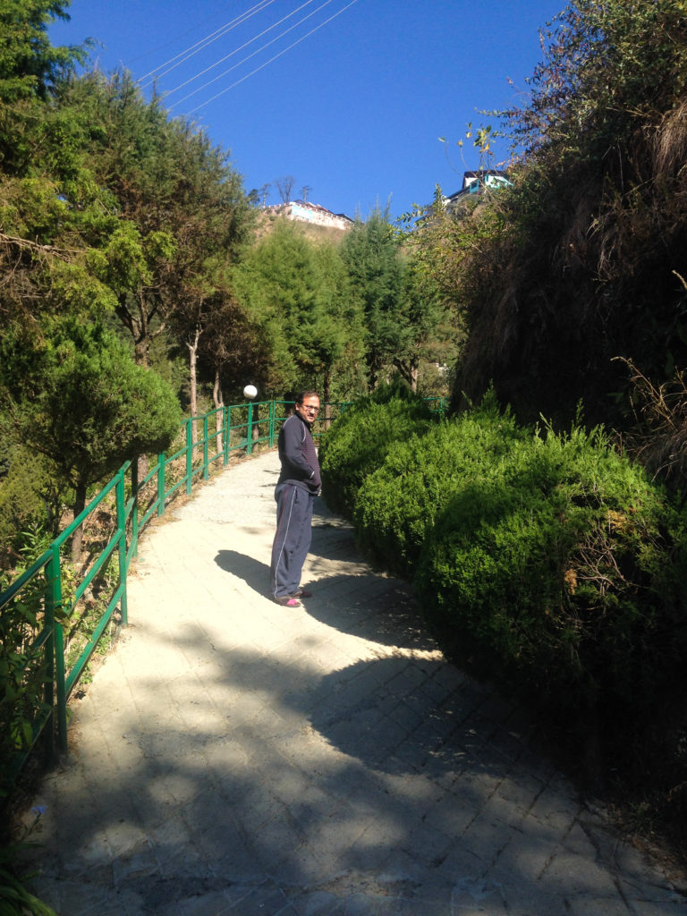Slope to reach cottages at Hotel country inn Mussoorie