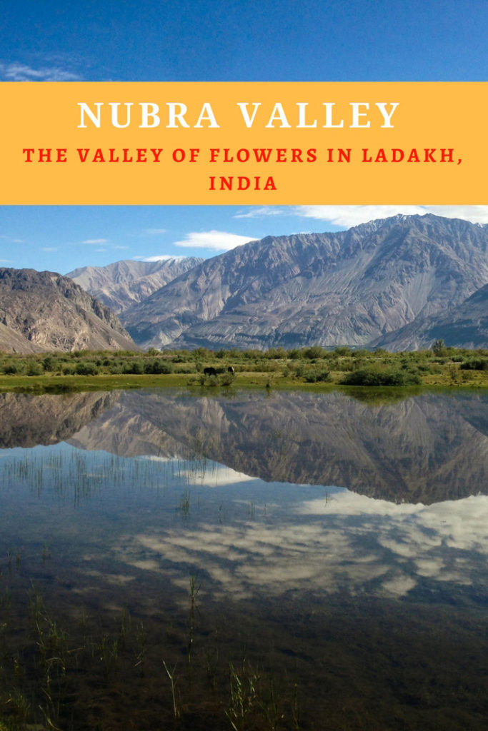 Nubra Valley - The Valley of Flowers in Ladakh, India