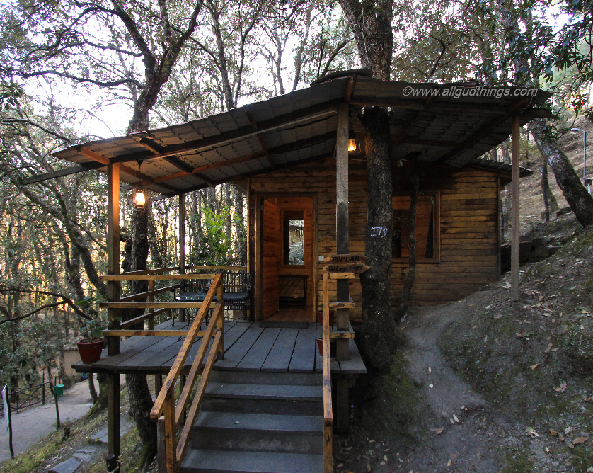 Super Deluxe Cottage nestled in the woods - Aamod Resort Shoghi