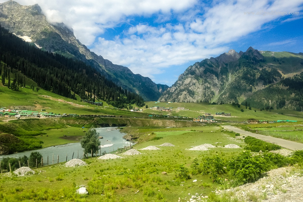 Sonamarg - The Golden Meadows