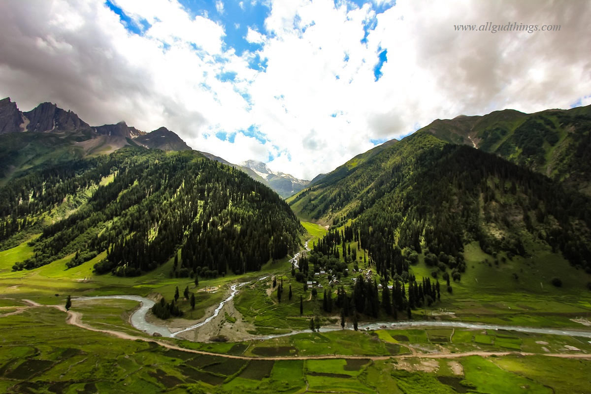 The Golden Meadows - Sonamarg