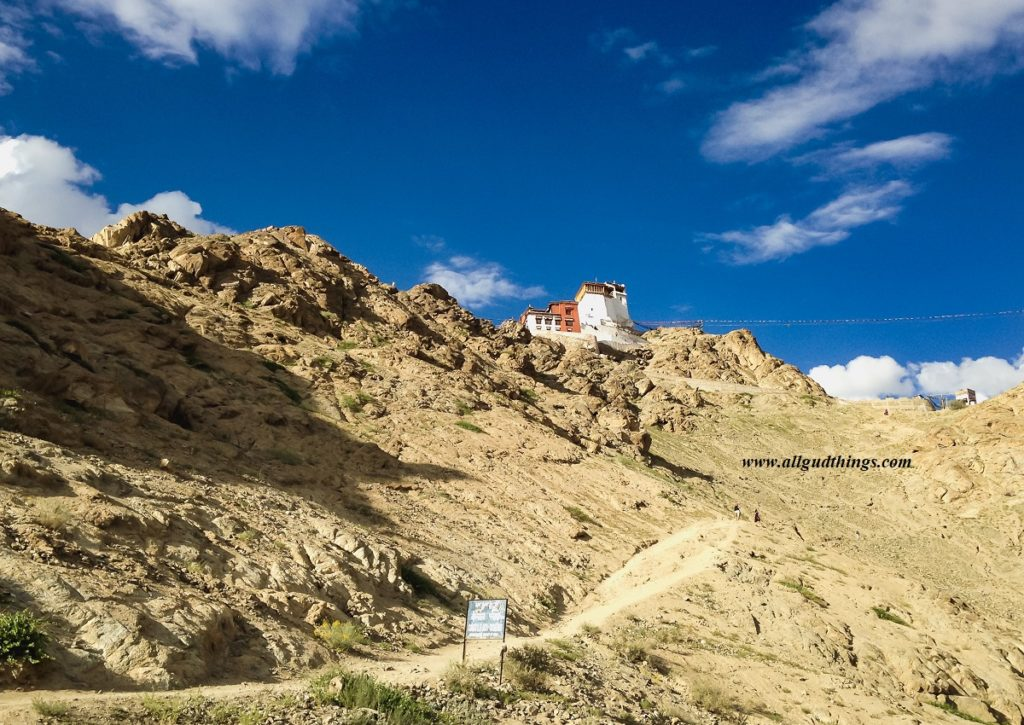 Tsemo Namgyal Castle view from Leh Palace
