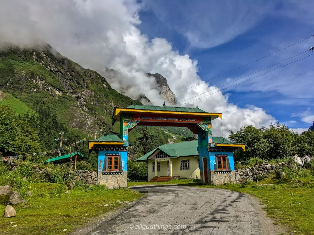 Shingba Rhododenderon Sanctuary in North Sikkim