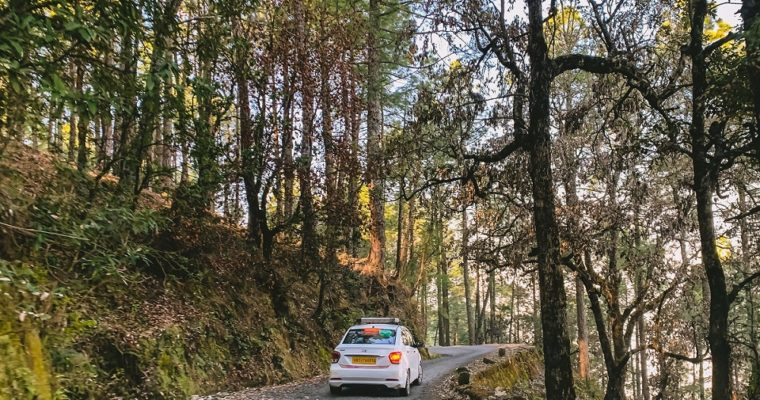 Travel Binsar to Rejuvenate your Soul