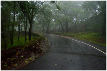 Pachmarhi road during monsoon road trip