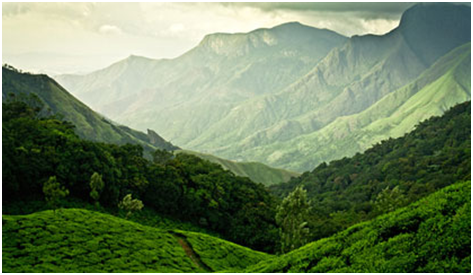 Munnar views during monsoon road trip